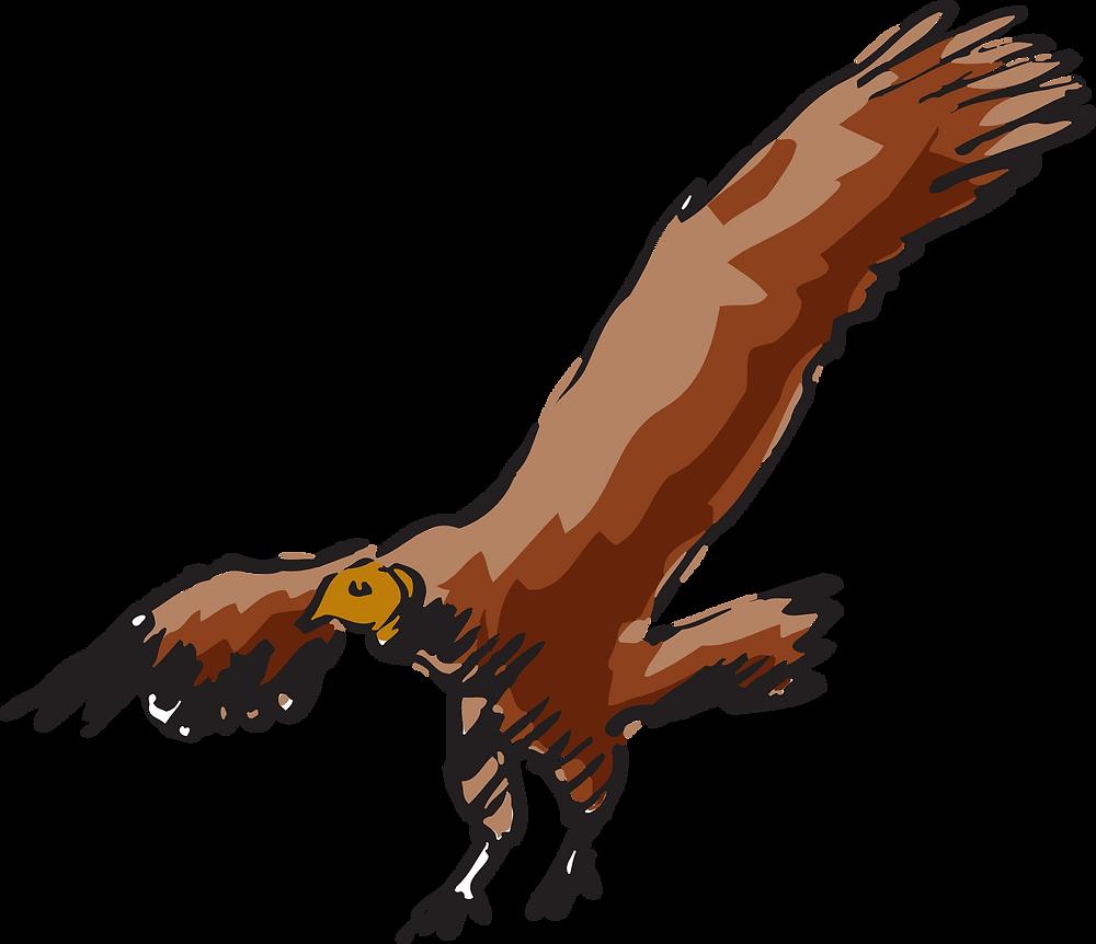 vulture-46014.png