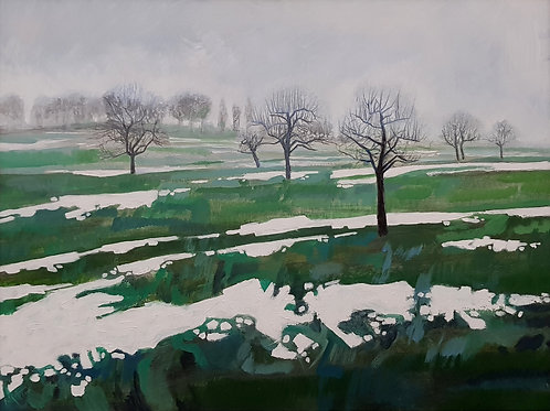 Le jardin, 2015, 80x60cm, Nicolas Ruffieux