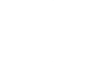 logo-verla_edited.png