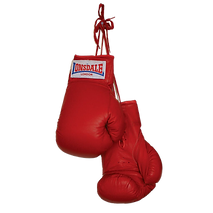 Boxing-Gloves-Download-PNG.png