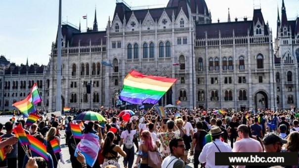 LGBTİ+ bayraklı bir grup gösterici