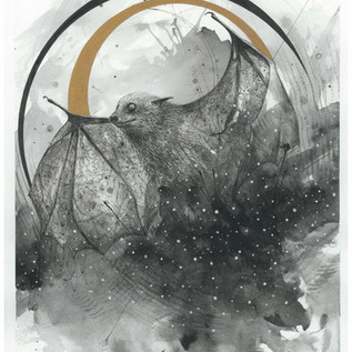 Cosmic Bat