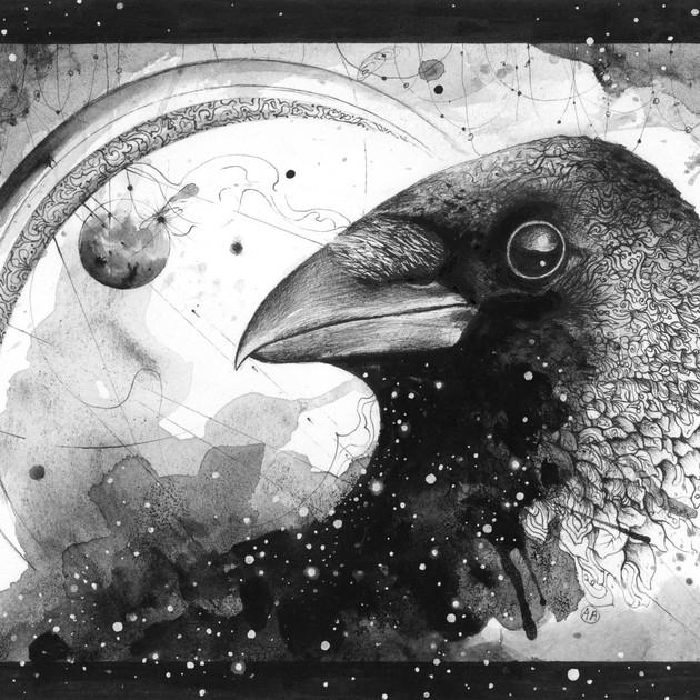 Cosmic Crow