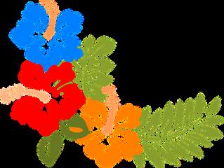Saying Aloha to Aloha: What a bad movie taught me about good writing