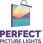 perfect picture lights.jpg