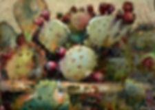 NOAPS Hardy Cactus  copy.jpeg
