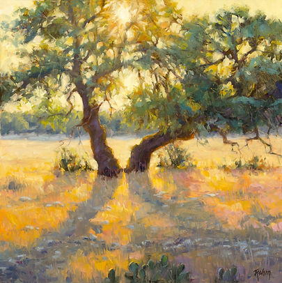 NOAPS Rohm _afternoon oaks 24x24.jpg