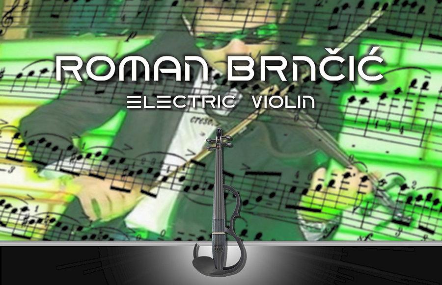 electric violin | House E-Geiger Roman
