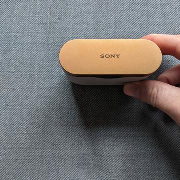 Sony WF-1000XM3 Case