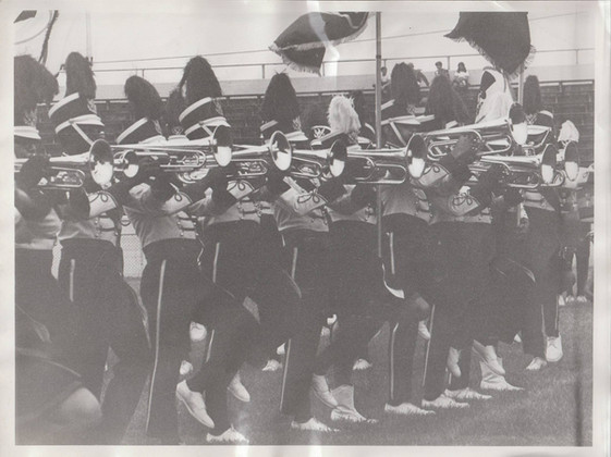 VIPS Corps Horn Line