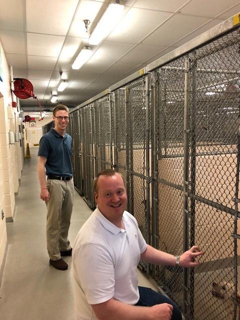 AACO animal shelter 4