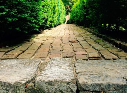 brick path behind