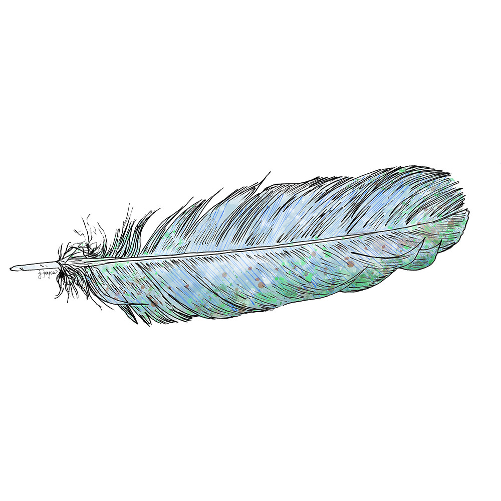 blue feather, style