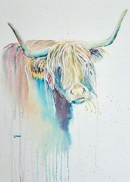 Funky Ox