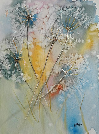 Salt Flowers