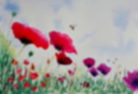Poppies bee sml.jpg