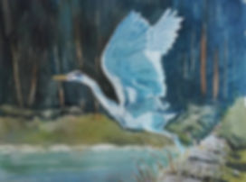Blue Heron sml.jpg