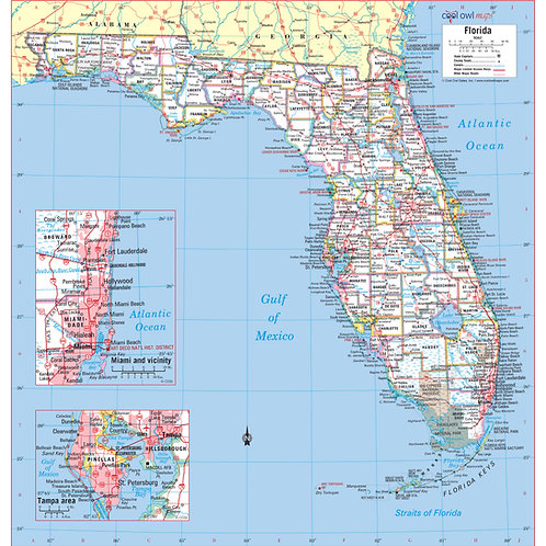 Florida states wall map