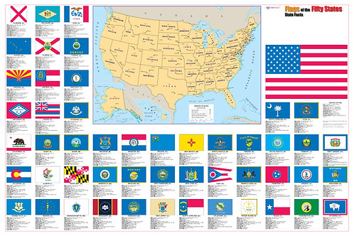 USA state flags wall map
