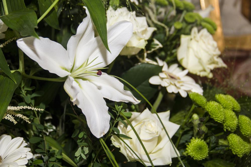 Blumen 3.jpg