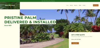 Pristine Palm