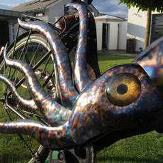 Take Your Pet Squid Out for a Walk - or A Ride