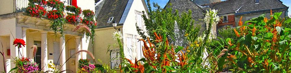 Bienvenue ch tillon sur indre contacter la mairie - Office de tourisme chatillon sur indre ...