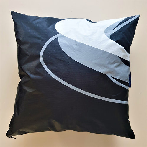 COUSSIN RODRIGUES 13