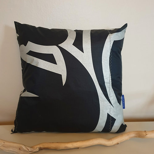 COUSSIN RODRIGUES 9