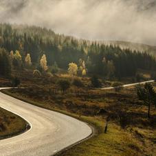The winding road.jpg