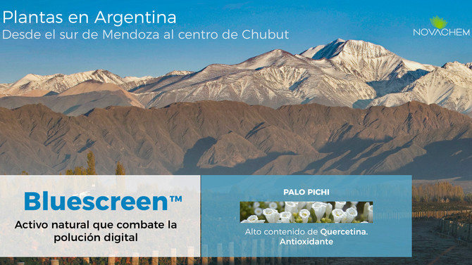 Plantas de Argentina