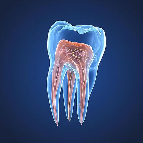 Endodontie-cabinet-de-dentaire-bayeux.jpg
