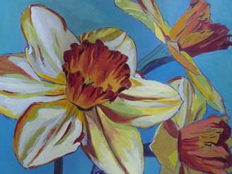 Daffodils by Katrina Fyfe
