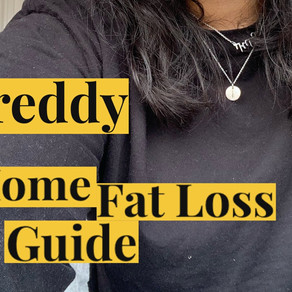 Shreddy Home Workout Guide Review