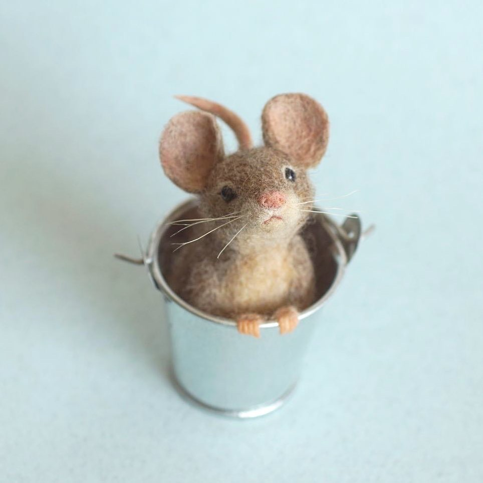 MOUSE IN A BUCKET