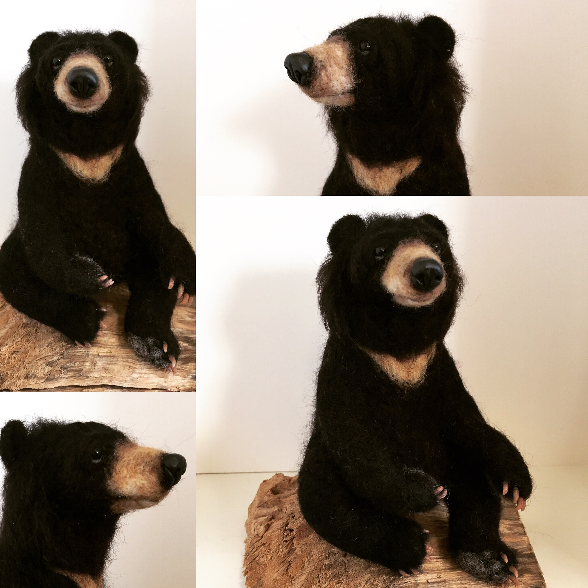 Needle felted Moon Bear Jo Gardiner Art