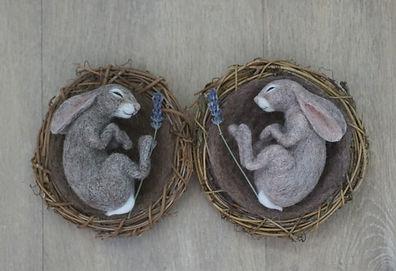 bunnies 19 marchDSC06931.JPG
