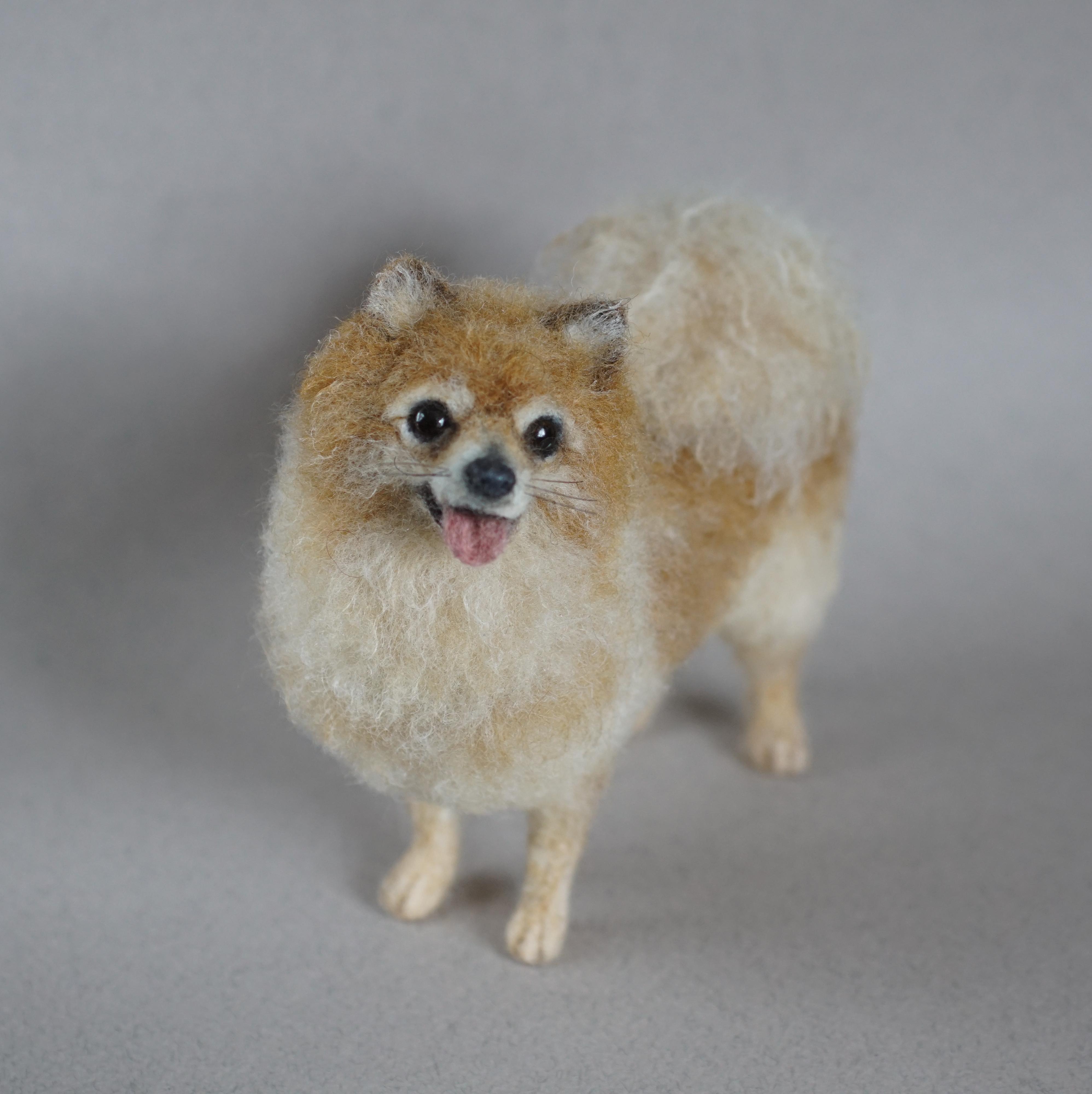 Needle Felted Pomeranian 8- Jo Gardiner