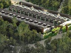Tulum Región 15 2022