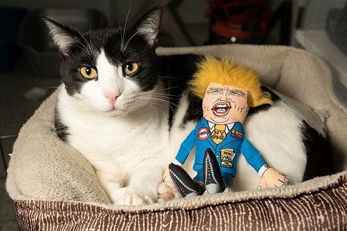 The Donald Catnip Toy