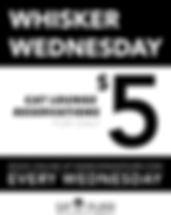 2020-SNP-WHISKER-WEDNESDAY.jpg