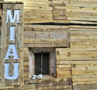 Special M.I.A.U. Fanzara Festival