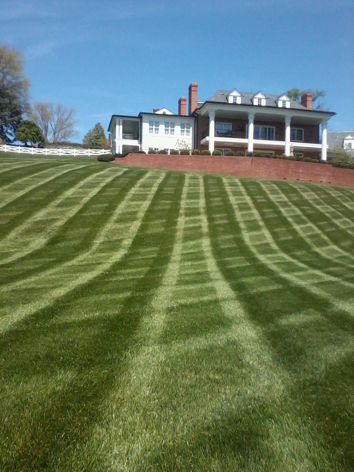 Annapolis Lawn Maintenance