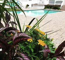 West River, MD - Pool Deck/Pavers
