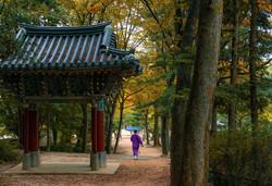 korean-folk-village-5286449_1280