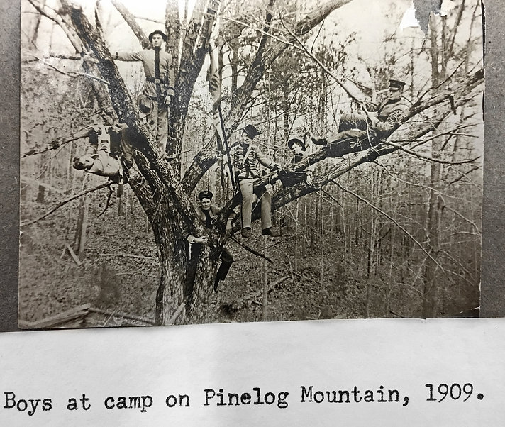 Reinhardt boys in trees.JPG
