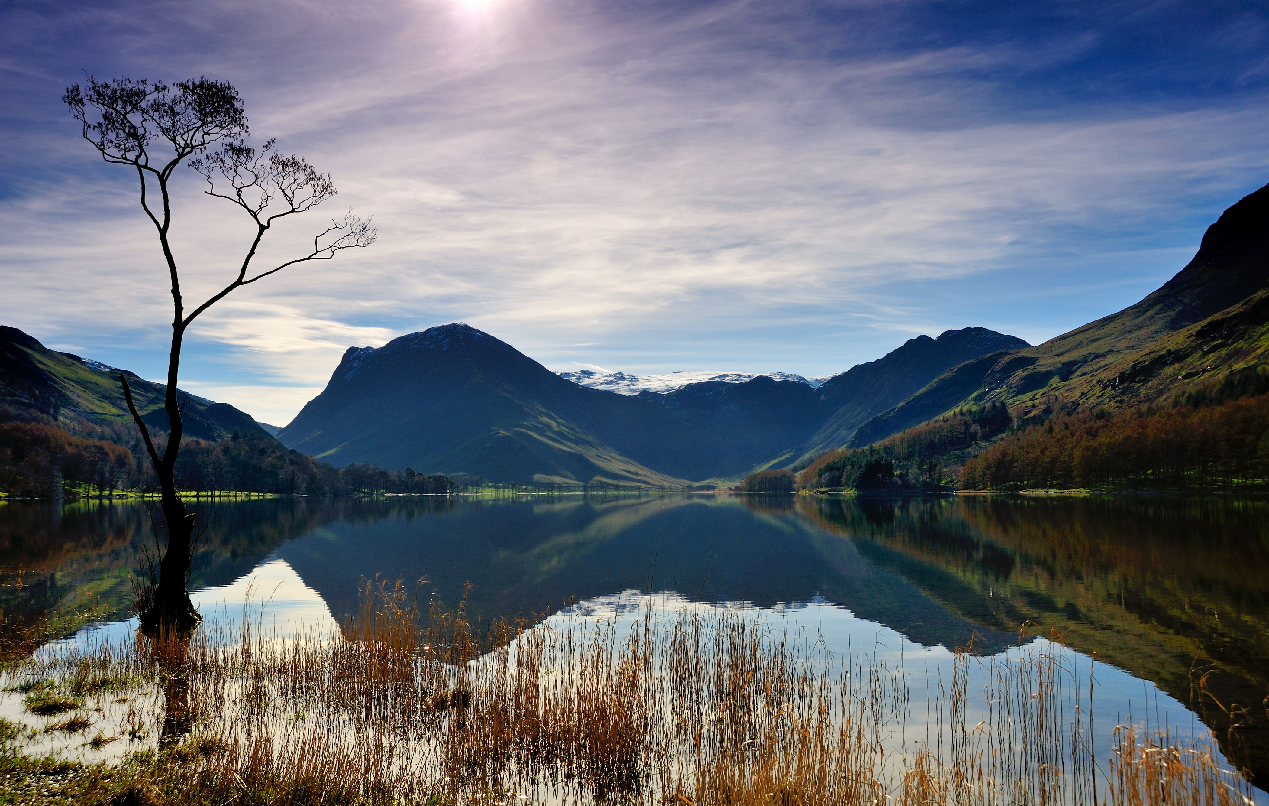 The Buttermere loner