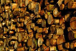 159/365 Log stack