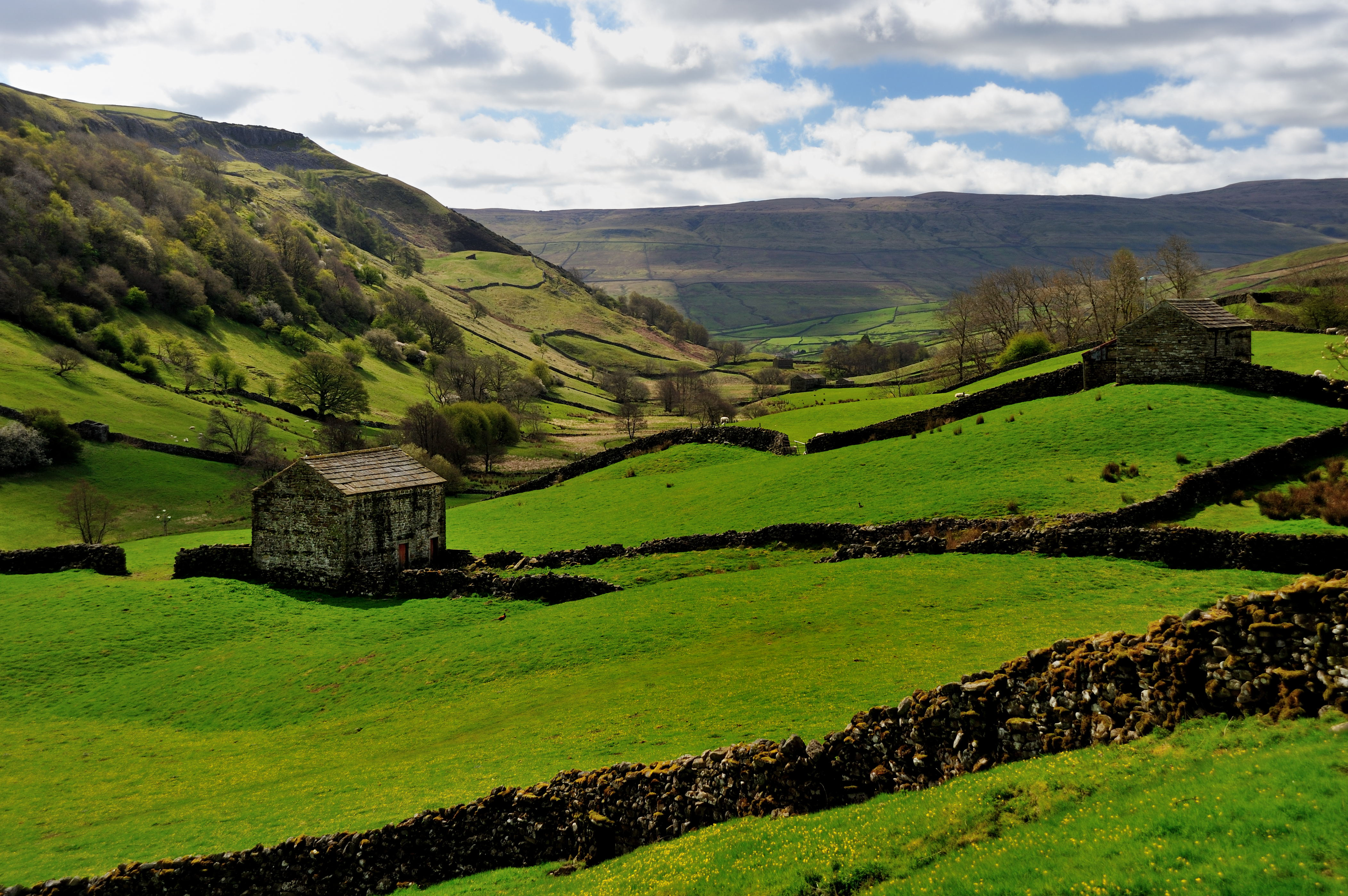 Simply Swaledale