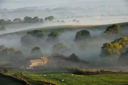 169/365 Morning mist